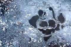 Estrutura do gelo da angra do inverno. Foto de Stock