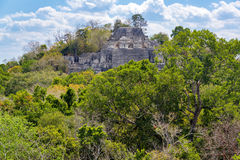 Estrutura dois em Calakmul, México imagem de stock royalty free