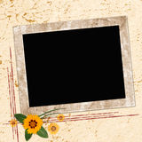 Estrutura para convites Imagens de Stock Royalty Free