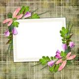 Estrutura para o cumprimento ou o convite Fotos de Stock