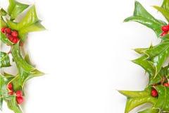 Estrutura verde do Natal com o isolado da baga do azevinho Foto de Stock Royalty Free