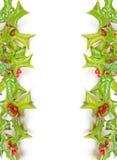 Estrutura verde do Natal com tiro do estúdio Imagem de Stock