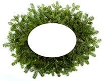 Estrutura verde do Natal isolada no fundo branco Imagens de Stock