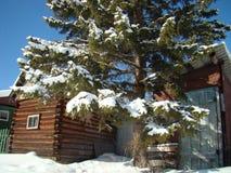 Estruturas do log na vila Siberian imagens de stock