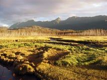 Estuário com montanhas Fotografia de Stock