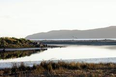 Estuário de Waikanae, Kapiti, Wellington, Nova Zelândia Fotografia de Stock