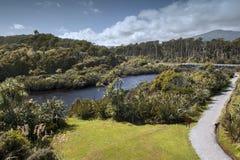 Estuário do rio em Tauparikaka Marine Reserve, Haast, Nova Zelândia fotografia de stock
