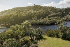 Estuário do rio em Tauparikaka Marine Reserve, Haast, Nova Zelândia imagens de stock royalty free