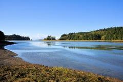 Estuário nacional da reserva natural de Willapa Foto de Stock Royalty Free
