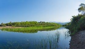 Estuários do Neda do rio em Peloponnese, Grécia imagens de stock royalty free