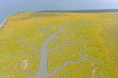 Estuaire coloré sur une côte à distance Photos libres de droits
