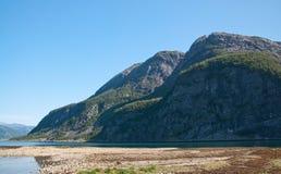 Estuario del fiume Immagine Stock Libera da Diritti