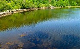 Estuario del fiume di Passagassawakeag a Belfast, Maine Immagini Stock Libere da Diritti