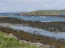 Estuario di Croig, isola Mull Fotografie Stock