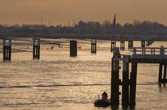Estuario en el amanecer Foto de archivo