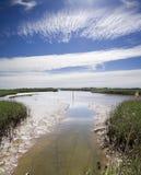 Estuary. River estuary at low tide Royalty Free Stock Photos