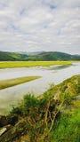 estuary Imagem de Stock