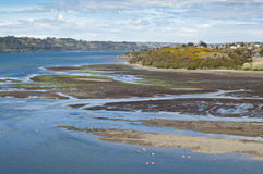 Estuary in Castro. Stock Photography
