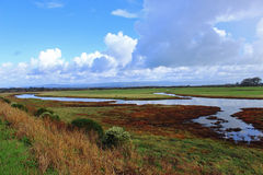 Estuary Landscape. Colorful channels in an estuary Royalty Free Stock Photos