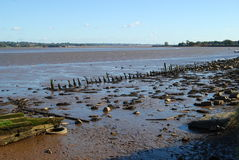 Estuary at low tide Stock Photos