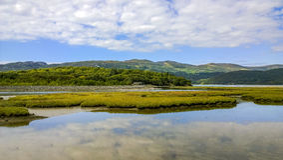Estuary Stock Photography