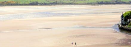 Estuary near Portmeirion 1 Royalty Free Stock Image