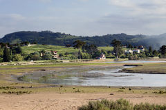 Estuary Stock Photography