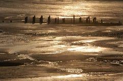 Estuary reflections devon Royalty Free Stock Photography
