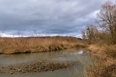 Estuary of the river Bregenzer Ache into lake Constance on a cloudy day in spring. Estuary of the river Bregenzer Ache into lake Constance Bodensee on a cloudy stock image