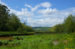 Estuary. View of the river in the afternoon Royalty Free Stock Photos