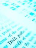 Estudando perfis do ADN Fotos de Stock