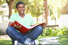 Estudante adolescente masculino que estuda no parque Imagem de Stock Royalty Free