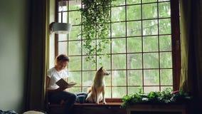 A estudante afro-americano atrativa é livro de leitura e afago de seu cão do puro-sangue que senta-se na borda da janela em moder vídeos de arquivo