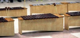 Estudante Diatonic Xylophone com malhos foto de stock royalty free