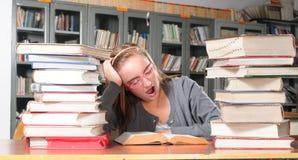 Estudante em uma biblioteca. Foto de Stock Royalty Free
