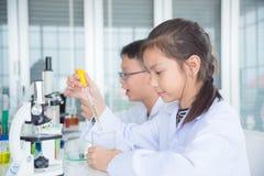 Estudante que faz a experiência na sala de aula da química imagens de stock