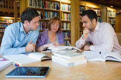 Estudantes adultos que estudam junto na biblioteca Foto de Stock