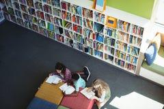 Estudantes atentos que estudam na biblioteca Imagens de Stock