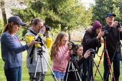 Estudantes da classe da fotografia que aprendem Foto de Stock