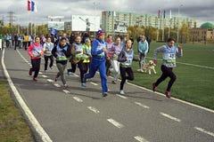 Estudantes da raça do atletismo Imagens de Stock