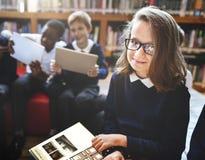 Estudantes diversos do tiro da educação que aprendem na biblioteca imagens de stock royalty free