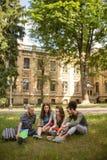 Estudantes do campus universitário que sentam-se na grama Foto de Stock