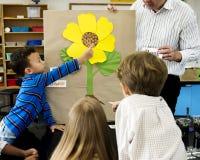 Estudantes do jardim de infância que aprendem a estrutura da flor imagens de stock