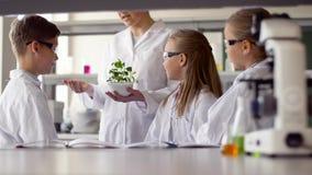 Estudantes e professor com a planta na turma de Biologia vídeos de arquivo