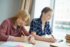 Estudantes inspirados Fotografia de Stock