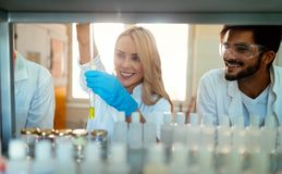 Estudantes novos da química que trabalham no laboratório Imagem de Stock