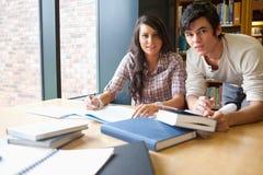 Estudantes novos que trabalham junto Fotografia de Stock