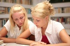 Estudantes que estudam na biblioteca Fotos de Stock Royalty Free
