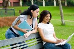 Estudantes que estudam o computador Fotos de Stock Royalty Free