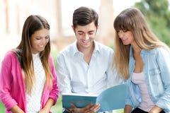 Estudantes que lêem um livro Fotos de Stock